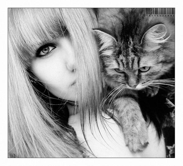Фото на аву девочка с кошкой