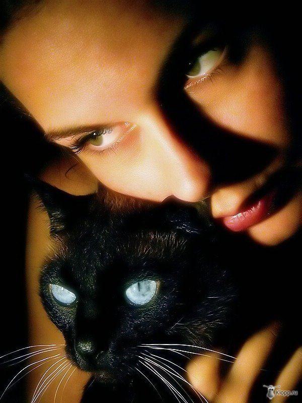 Кошка нападает и царапает сновидца — сонник указывает: о нем распустят клеветнические слухи.