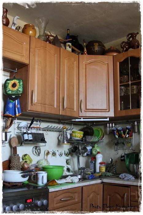Найди кота кухня