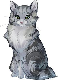 картинки коты аниме