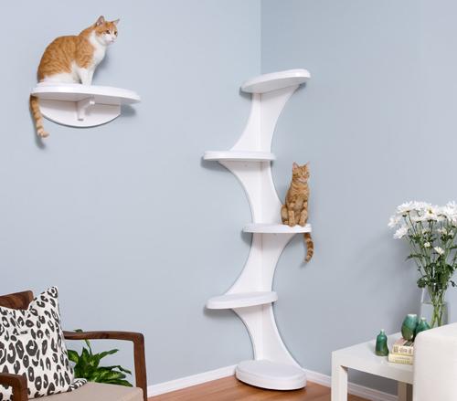 Как сделать место кошки уютным