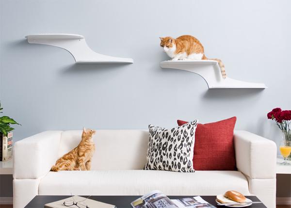 Интерьер для кошек фото