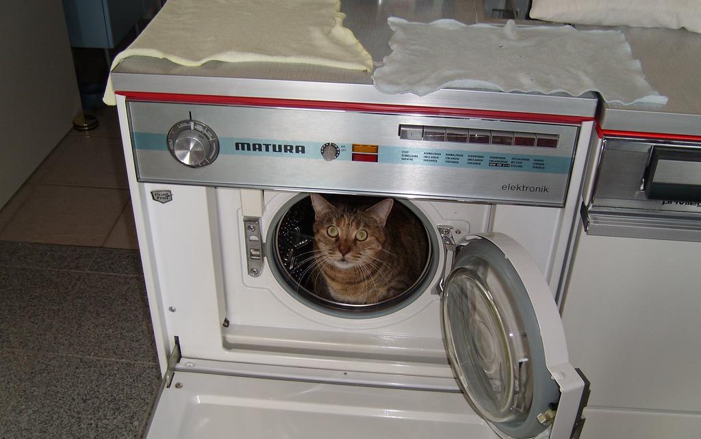 стиральные машины смешные картинки беру картинку