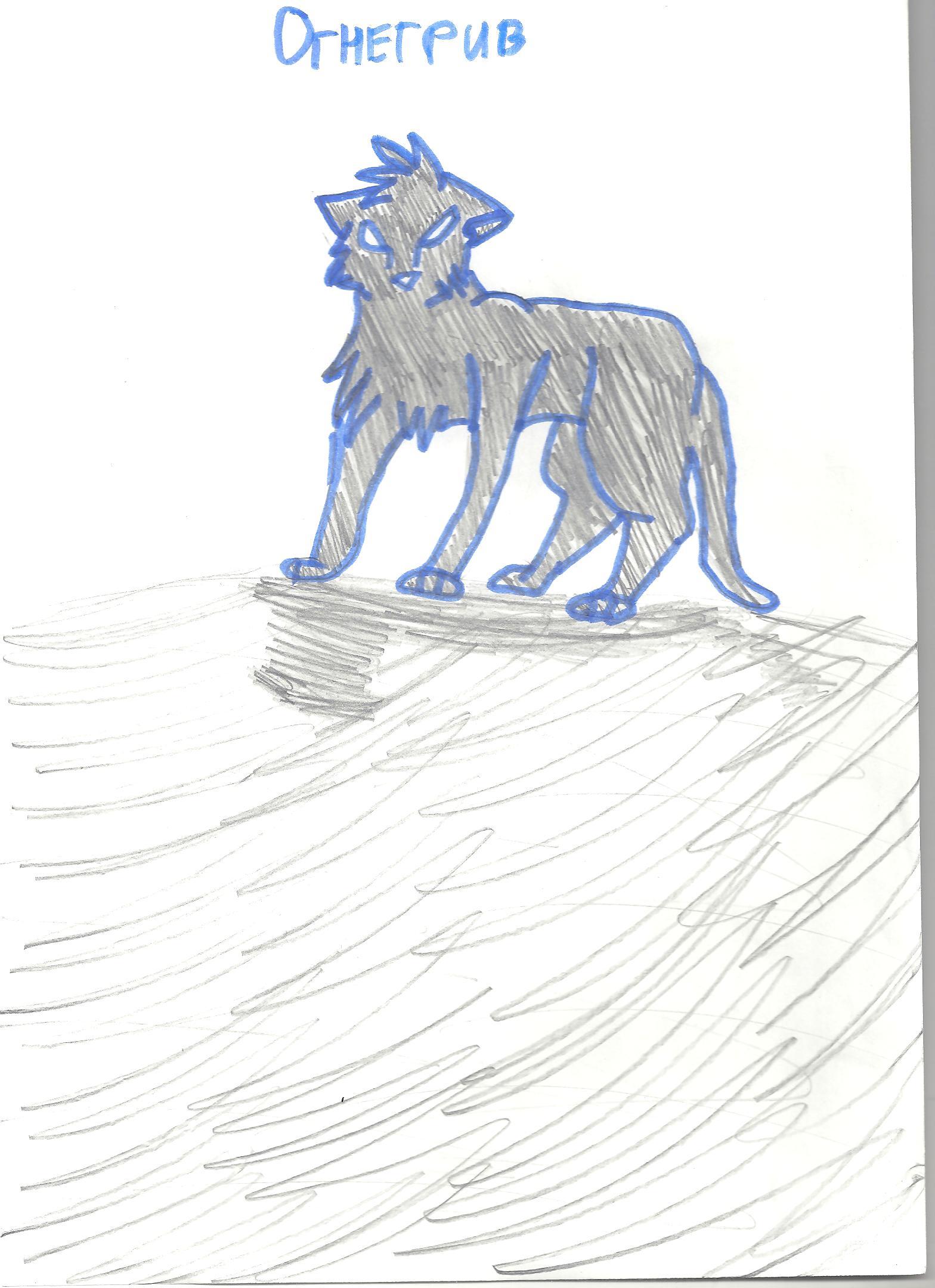 Картинки рисунков котов воителей